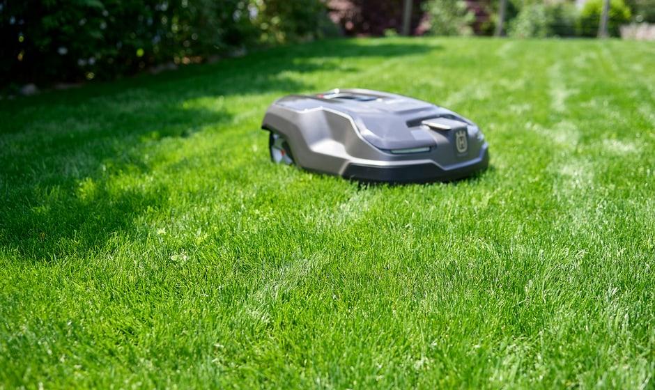 Image promotionnelle Robo Lawn Royal