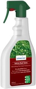 Selectox Royal Spray für einen unkrautfreien Rasen